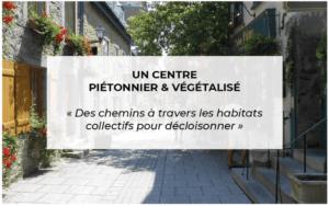 Contribution citoyenne : centre piéton et végétalisé